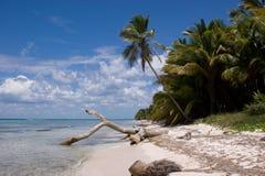 Praia de Saona Fotografia de Stock Royalty Free