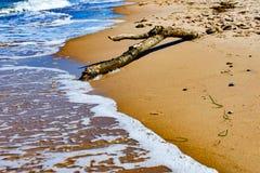 A praia de Sassnitz 1 Imagens de Stock Royalty Free