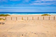 Praia de Surfboard Fotografia de Stock