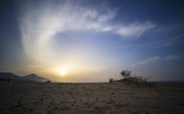 Praia de Surfboard Fuertaventura foto de stock