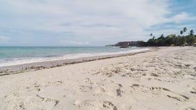 Praia De Tabatinga, Conde PB Brazylia zbiory