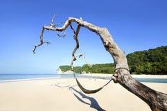 Praia de Tarimbang, Sumba, Indonésia Imagem de Stock