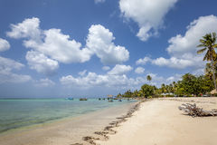 Praia de Tobago Imagens de Stock Royalty Free