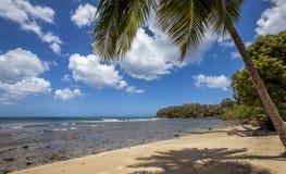 Praia de Tobago Fotos de Stock Royalty Free