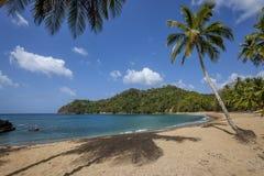 Praia de Tobago Foto de Stock