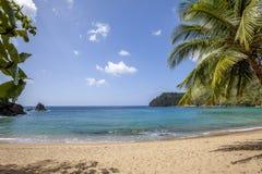 Praia de Tobago Imagens de Stock