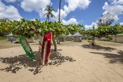 Praia de Tobago Fotografia de Stock