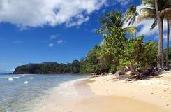 Praia de Tobago - Mt Baía de Irvine e praia - praia tropical do mar das caraíbas Fotografia de Stock Royalty Free