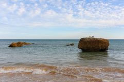 Praia de Tres Castelos em Portimao, em Algarve & em x28; Portugal& x29; imagens de stock
