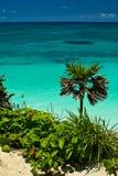 Praia de Tulum fotografia de stock
