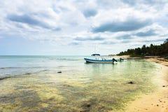 Praia de Tulum fotografia de stock royalty free