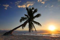 Praia de Tulum no Maya de Riviera em México maia fotografia de stock royalty free