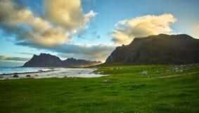 Praia de Uttakleiv Fotografia de Stock