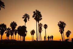 Praia de Veneza Por do sol Conceito do verão Fotografia de Stock Royalty Free