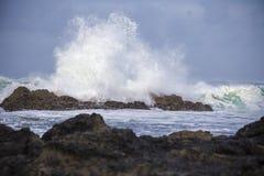 Praia de Vila Praia de Ancora, Portugal Imagens de Stock Royalty Free
