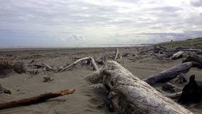 Praia de Waikanae, Nova Zelândia Imagens de Stock