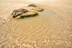 Praia de Whipsiderry Fotos de Stock