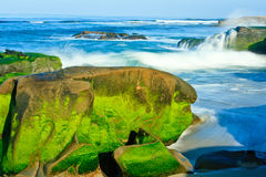 Praia de Windansea Fotografia de Stock