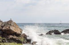 Praia de Zuma foto de stock royalty free