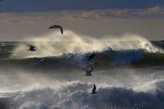 Praia distante de Rockaway Fotografia de Stock Royalty Free