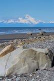 Praia do Alasca imagem de stock royalty free