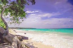 Praia do BLANCA de Playa do paraíso da ilha de Baru por Cartagena em Colômbia fotografia de stock royalty free