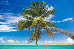 Praia do Cararibe Imagens de Stock