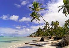 Praia do Cararibe selvagem. Samana. imagens de stock