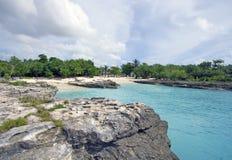 Praia do coral do console do caimão fotos de stock royalty free