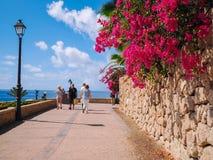 Praia do EL Duque em Costa Adeje Tenerife, Ilhas Canárias, Spain fotos de stock royalty free