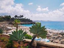 Praia do EL Duque em Costa Adeje Tenerife, Ilhas Canárias, Spain fotografia de stock