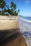 Praia do Forte, Bahia, Brazil. Praia do Forte is a small fishing village 50 miles north of Salvador along the coast road called Coconut Highway - so called royalty free stock photography