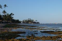 Praia do Forte - Bahia, Brazil royalty free stock image
