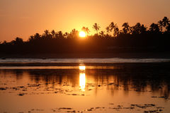 Praia do Forte - Bahia, Brazil stock photos