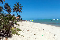 PRAIA DO FRANCES, BRAZIL. PRAIA DO FRANCES in a sunny day, BRAZIL royalty free stock photos