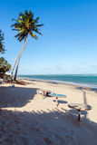 Praia do Frances, Brazil. Praia do Frances in a sunny day, Brazil royalty free stock photography