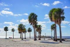 Praia do hernando de Florida: palmeira Fotografia de Stock