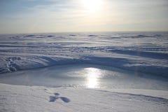 Praia do inverno. Ideia da skyline Foto de Stock