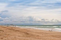 A praia do mar Imagem de Stock Royalty Free