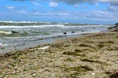 Praia do mar Báltico no clima de tempestade com ondas do mar Imagens de Stock