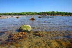 Praia do mar branco na ilha de Solovetsky Fotografia de Stock
