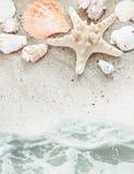 Praia do mar com beira dos escudos Foto de Stock