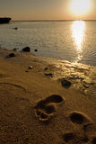 Praia do nascer do sol foto de stock