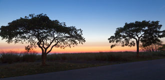 Praia do nascer do sol Fotos de Stock