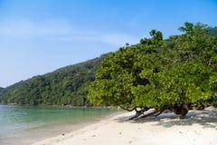 Praia do ngam do MAI no console de Surin Imagem de Stock Royalty Free