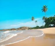 Praia do oceano contra a rocha e palmas no dia ensolarado Imagem de Stock