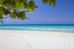 Praia do oceano de Varadero Fotografia de Stock