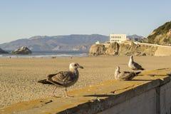 Praia do oceano em San Francisco, Califórnia do norte Imagens de Stock