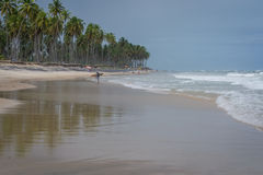 Praia do Paiva, Pernambuco - Brazil. Paiva Beach its a beach in the Cabo de Santo Agostinho municipality in Pernambuco's state. Its landscape is made up of a Royalty Free Stock Photos
