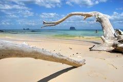 Praia do paraíso Imagens de Stock Royalty Free